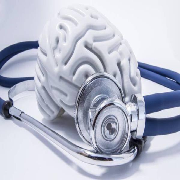 biały model mózgu